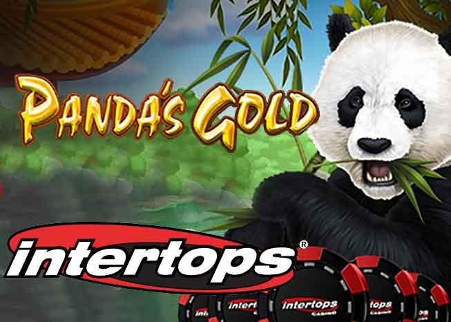 Der Panda's Gold Slot, ein Spiel rund um niedliche Pandabären